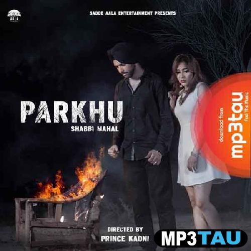 Parkhu Shabbi Mahal mp3 song lyrics