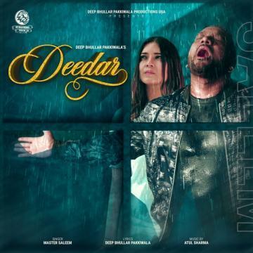 download Deedar Master Saleem mp3