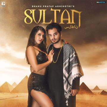 download Sultan Bhanu Pratap Agnihotri mp3